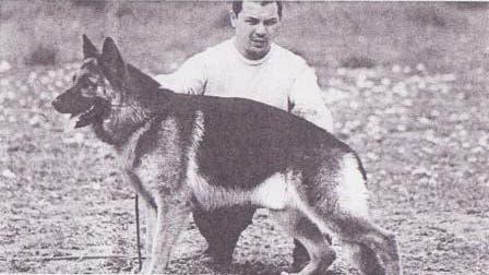 Día del Perro: Hoy 2 de junio, se homenajea hoy al «mejor amigo del hombre» en la Argentina
